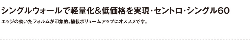 ボンドム【セントロ・シングル60】