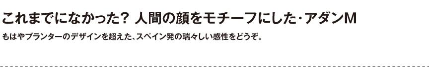 ボンドム【アダンM】