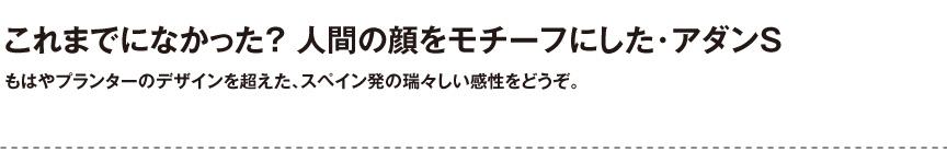 ボンドム【アダンS】