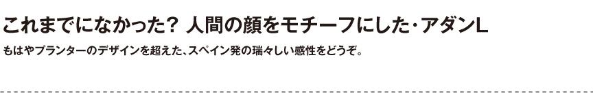 ボンドム【アダンL】